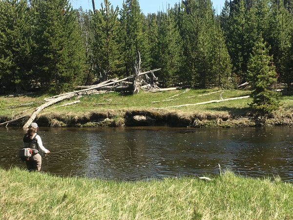 Fly Fisherman on the Firehole River