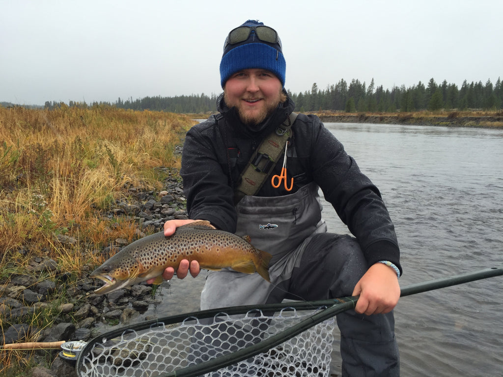 Madison River Brown Trout - West Yellowstone Montana