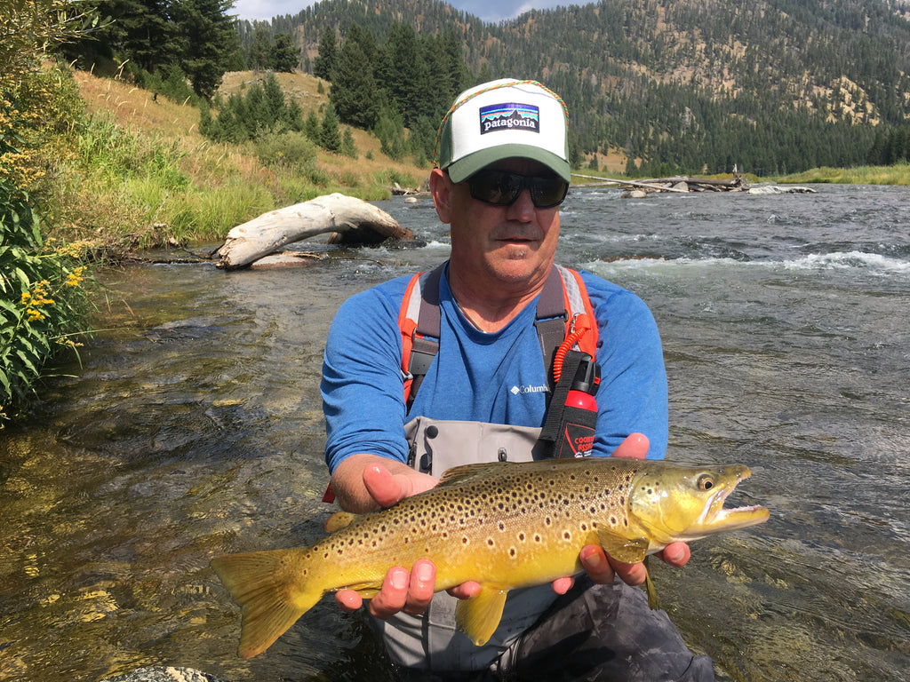 Brown Trout on the Madison River below Hebgen Lake
