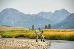 Madison River Fishing Report - Yellowstone National Park