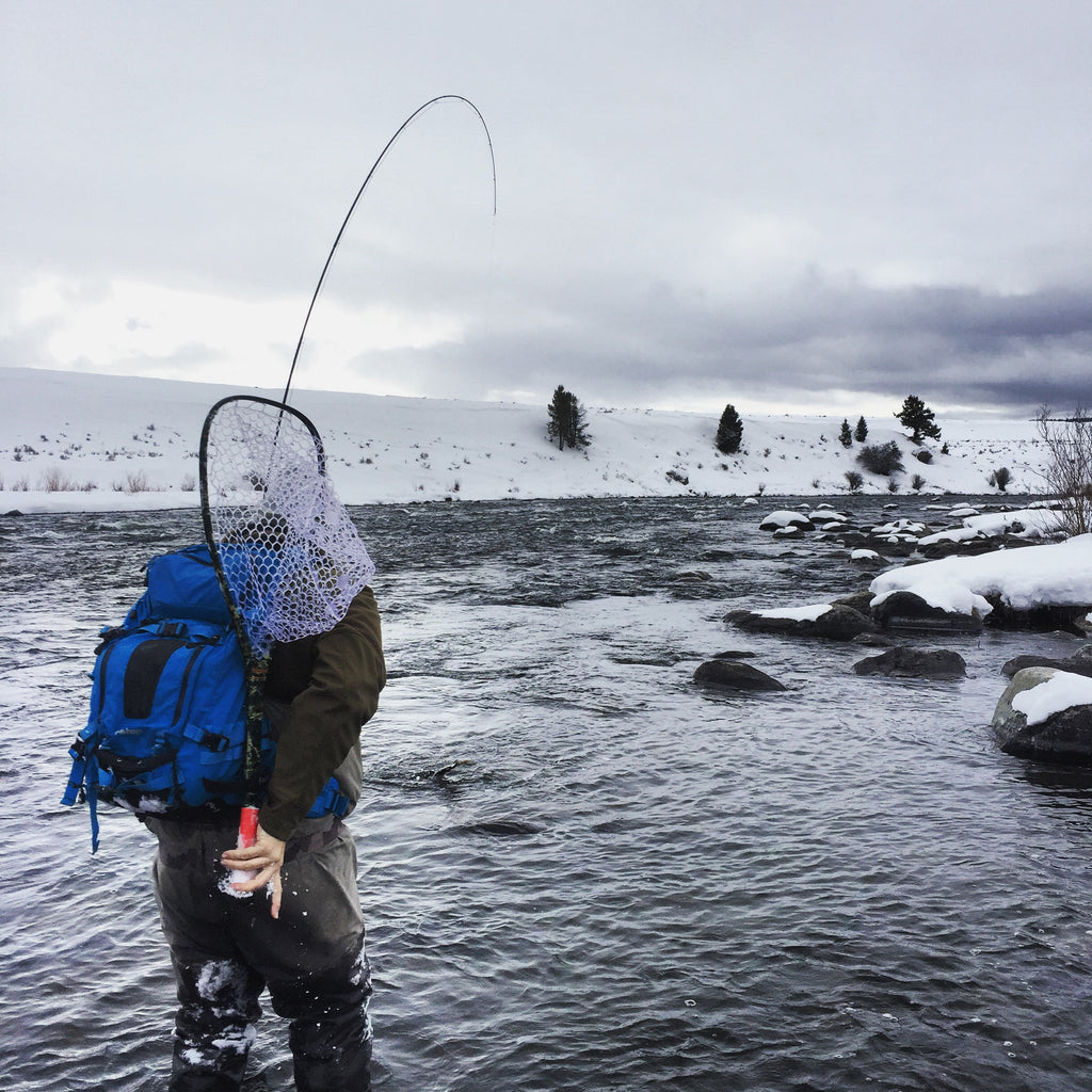 Montana Fly Fishing Guide Chris Daniel