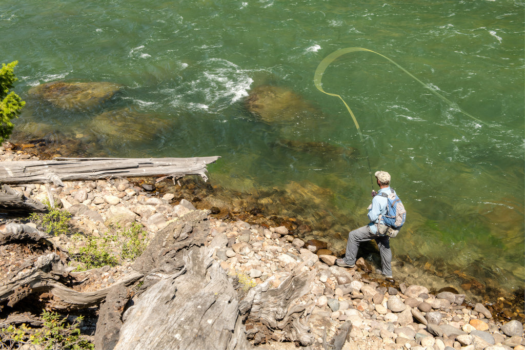 Trout Spey Fishing in Yellowstone National Park