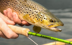 Fly Fishing Gear Reviews