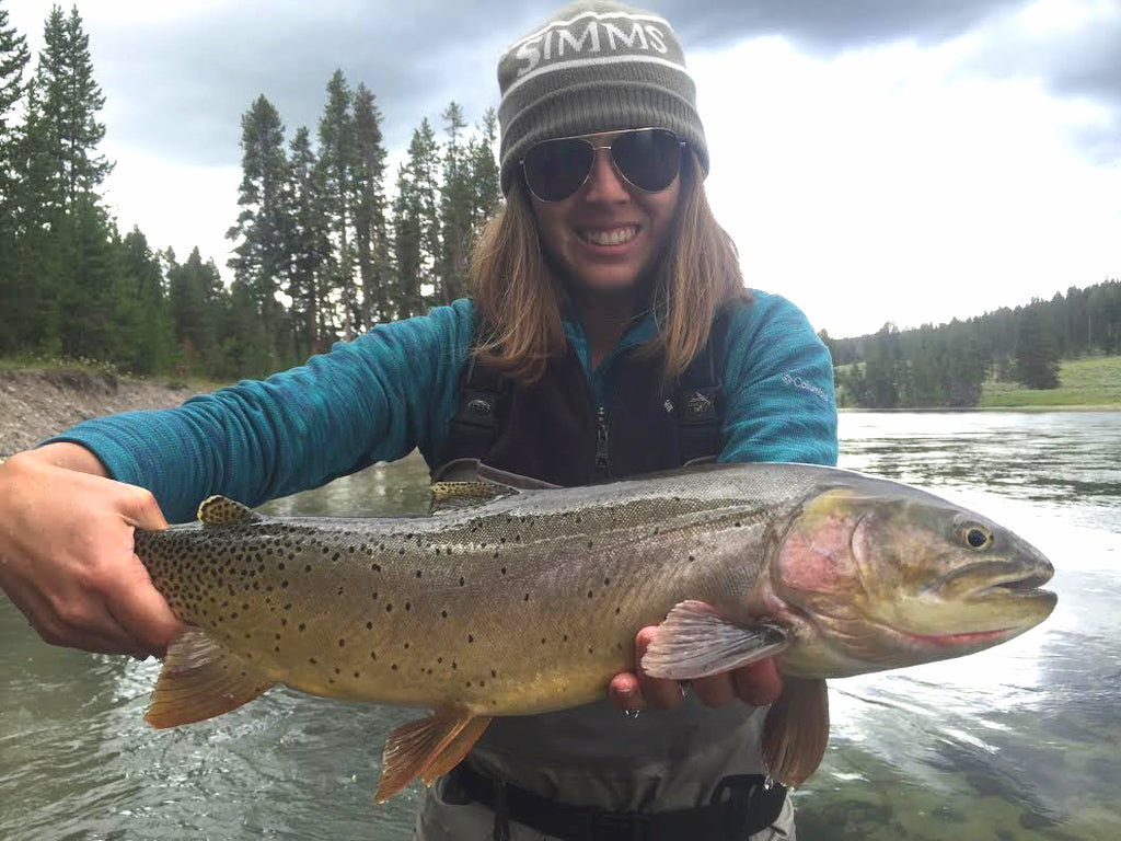 Rivers that Madison River Outfitters Fishes