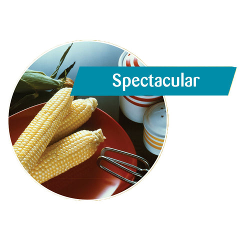 Spectacular Sweet Corn
