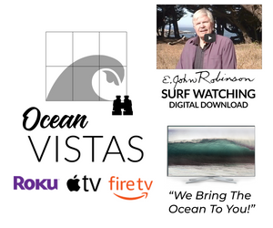 "Monthly Membership to Ocean Vistas plus FREE DOWNLOAD, ""Surf Watching for Seascape Painting"""