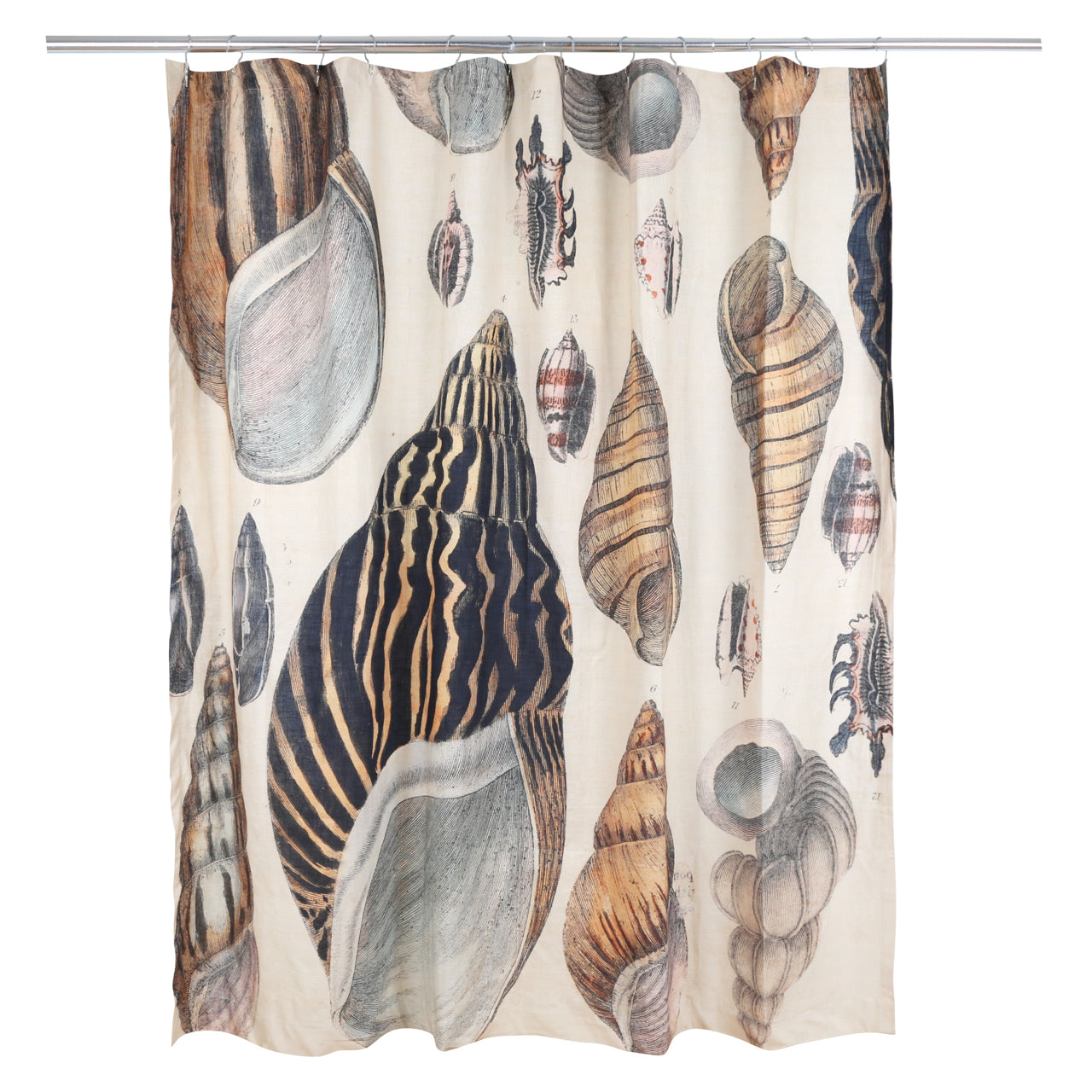 Siren Song Conch Shell Shower Curtain