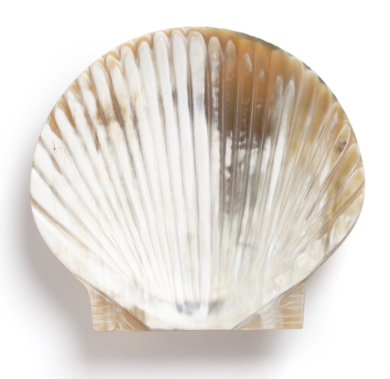 Siren Song Scallop Horn Dish
