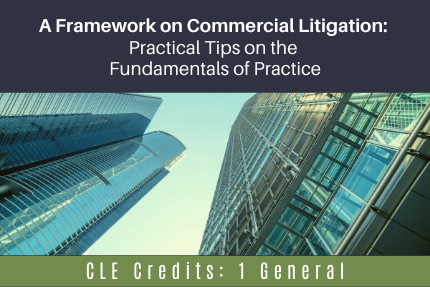 A Framework on Commercial Litigation: Practical Tips on the Fundamentals of Practice