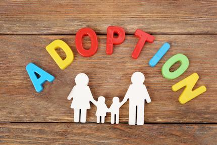 Adoption Law 101