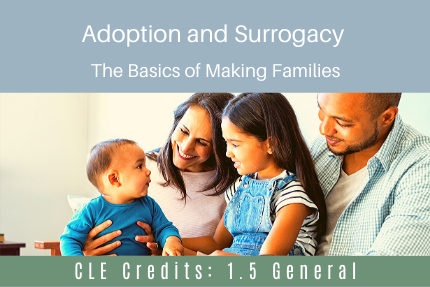Adoption and Surrogacy: The Basics of Making Families