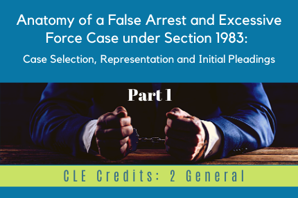 Anatomy of a False Arrest and Excessive Force Case under Section 1983: [Part 1]: Case Selection, Representation and Initial Pleadings