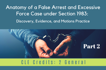 Anatomy of a False Arrest and Excessive Force Case under Section 1983: [Part 2]: Discovery, Evidence, and Motions Practice