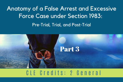 Anatomy of a False Arrest and Excessive Force Case under Section 1983 [Part 3]: Pre-Trial, Trial, and Post-Trial