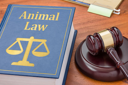 Animal Law for Lawyers