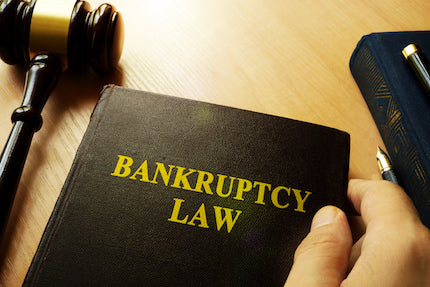 Bankruptcy 101 - 2019 Update