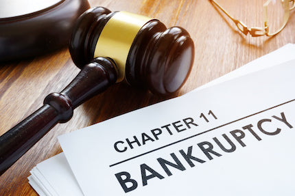Business Bankruptcy: An Introduction to Chapter 11: From Filing to Confirmation