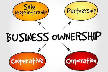 How to Choose the Right Business Entity & Trust Ownership Structure