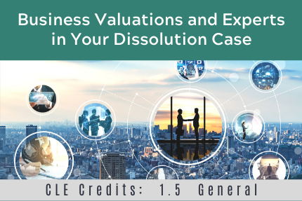 Business Valuations and Experts in Your Dissolution Case