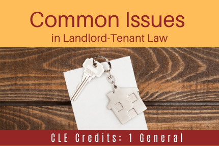 Common Issues in Landlord-Tenant Law