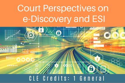 Court Perspectives on e-Discovery and ESI