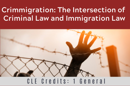 Crimmigration: The Intersection of Criminal Law and Immigration Law