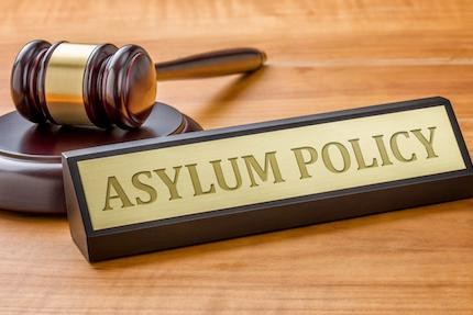 Defensive Asylum: Case Analysis, Strategies And Best Trial Practice