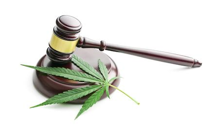 Ethical Considerations in Cannabis Law