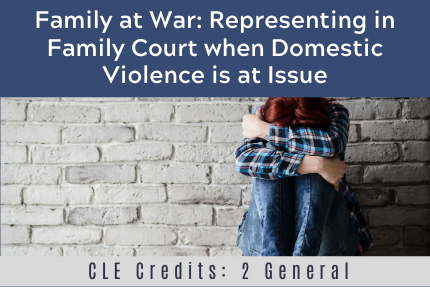 Family at War: Representing in Family Court when Domestic Violence is at Issue