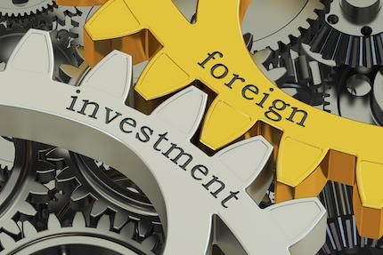 Immigrant and Nonimmigrant Options for Foreign Investors