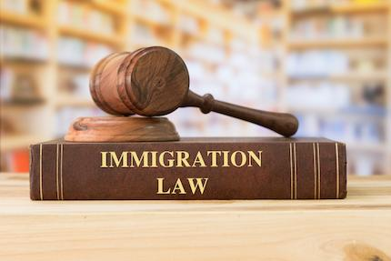 An Overview of Immigration Law