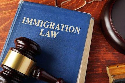 Legal Overlaps with Immigration Law