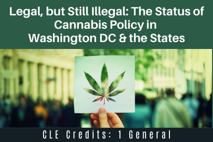 Legal, but Still Illegal: The Status of Cannabis Policy in Washington DC & the States