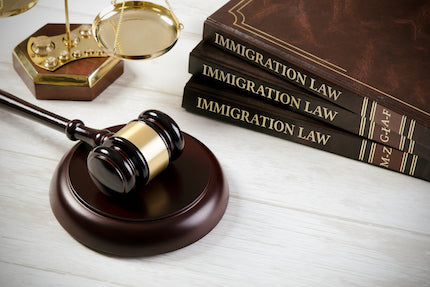 Mitigation of Illegal Behavior in Immigration Defense