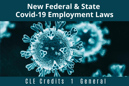 New Federal & State Covid-19 Employment Laws