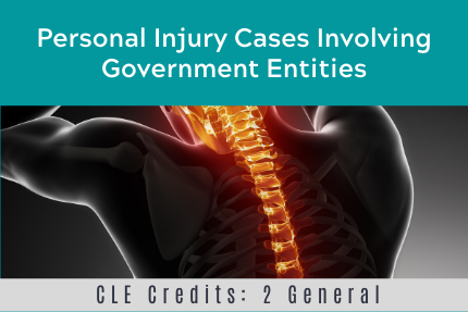 Personal Injury Cases Involving Government Entities