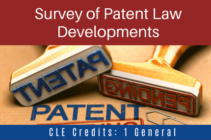 Survey of Patent Law Developments