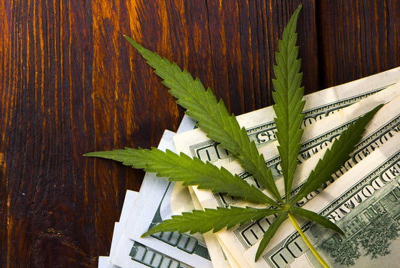 Can Marijuana Business Operators Obtain Bankruptcy Relief? NIMBC - Not In My Bankruptcy Court