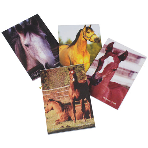 NOTEBOOK - HORSE                 12 CT/PKG