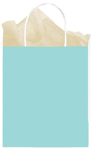 BAG - ROBIN EGG BLUE MEDIUM KRAFT EACH