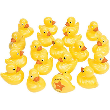 NUMBER MATCHING FLOATING DUCKS
