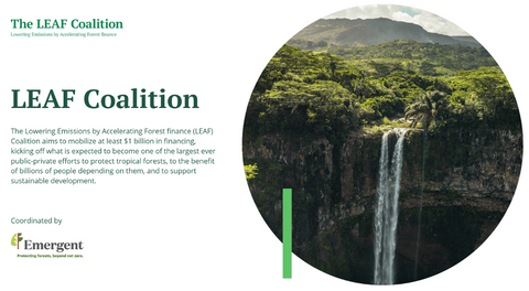 The Lowering Emissions by Accelerating Forest finance (LEAF) Coalition