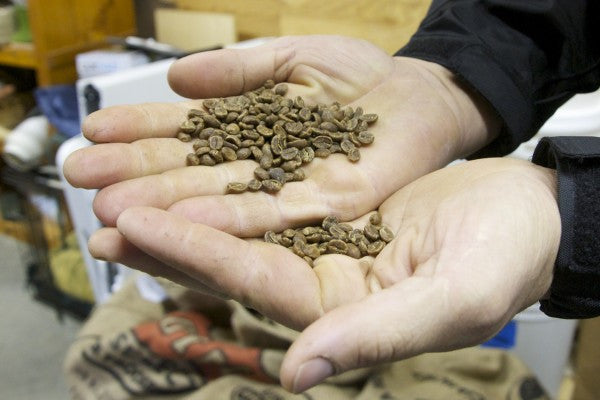 Coffee company connects Maine cup to Costa Rican farm
