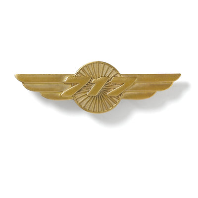 Boeing 717 Wings Pin