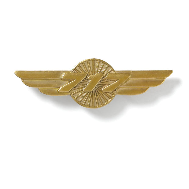 Boeing 717 Wings Pin (6402879558)