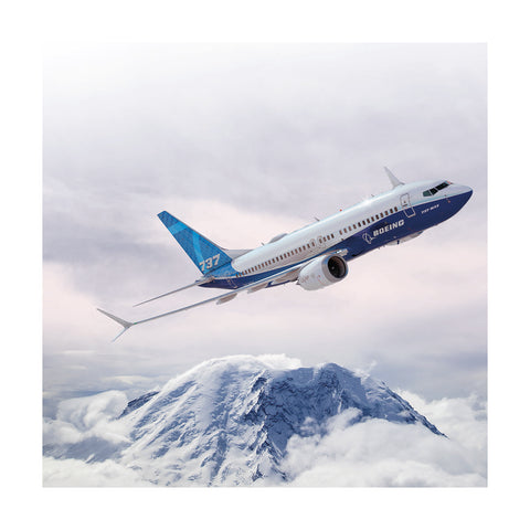 737 MAX Matted Print Small