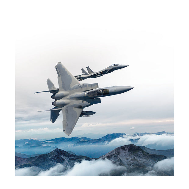 Boeing F-15 Matted Print - Large (2752896565370)