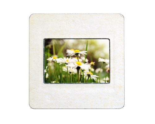"2x2"" Mounted Slides"