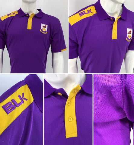Ballyhaunis RFC Tek VI Polo *LIMITED EDITION* - Final sizes left