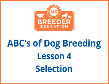 ABCs of Dog Breeding, Selection - Free Course